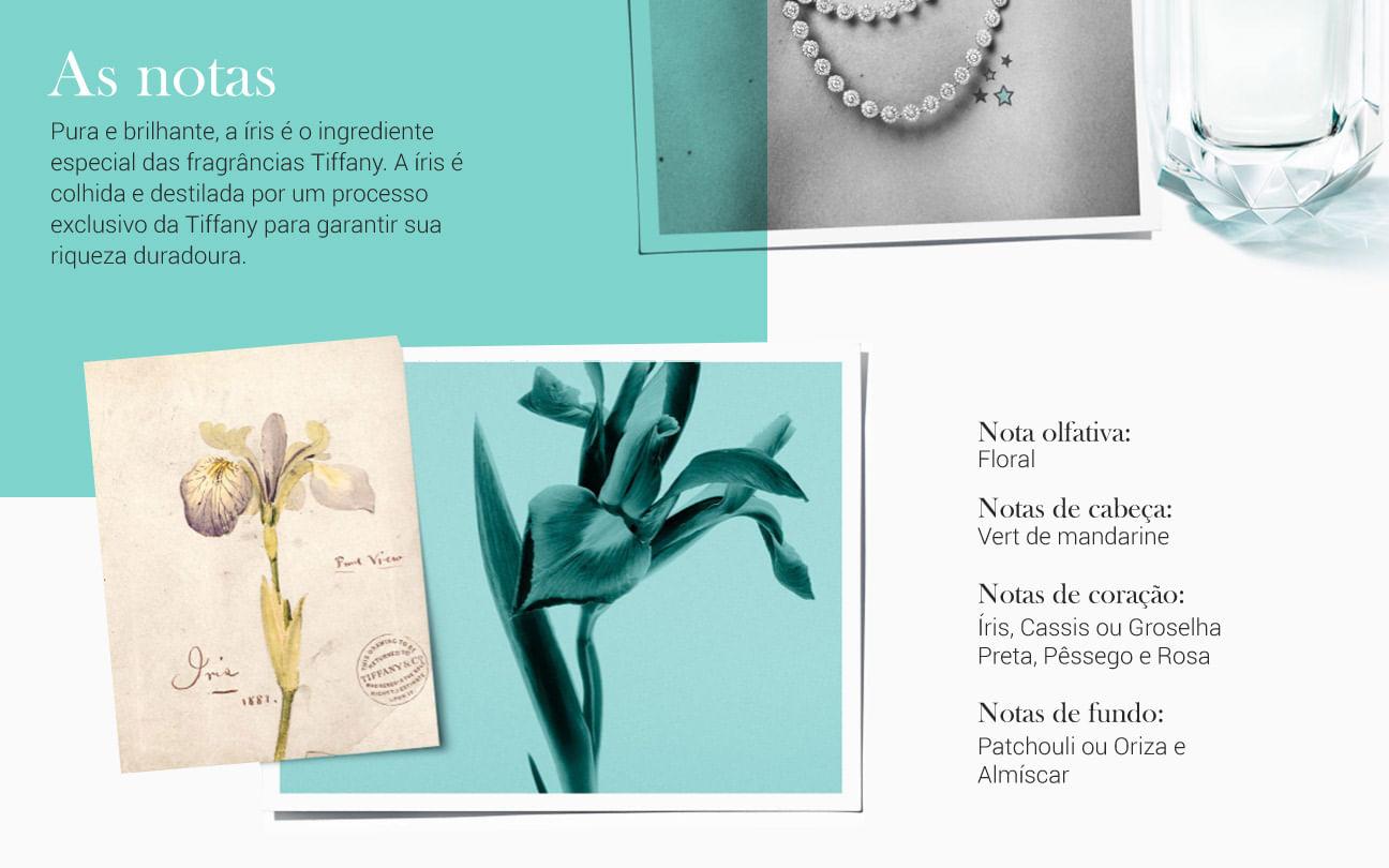 Tiffany co Eau de Parfum Feminino]